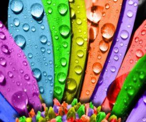 تأثیر رنگها در تبلیغات و برندینگ