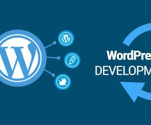 مزایا و معایب طراحی سایت وردپرس